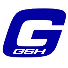 GSH inmo